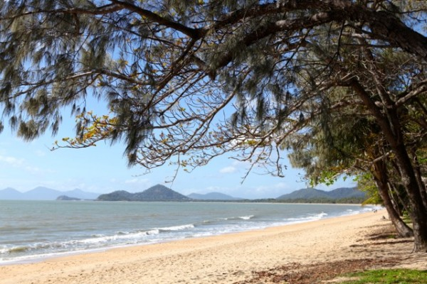 Beach at Palm Cove (2)