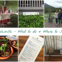 Healesville – What to Do and Where to Stay