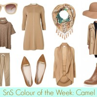 SnS Colour of the Week-Camel
