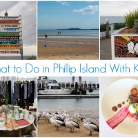 What to do on Phillip Island with Kids