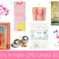 25 Kris Kringle Gift Ideas Under $25 (Christmas 2016)