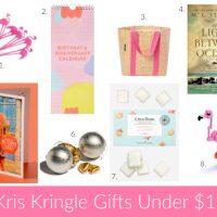 25 Kris Kringle Gift Ideas Under $25 (Christmas 2016)